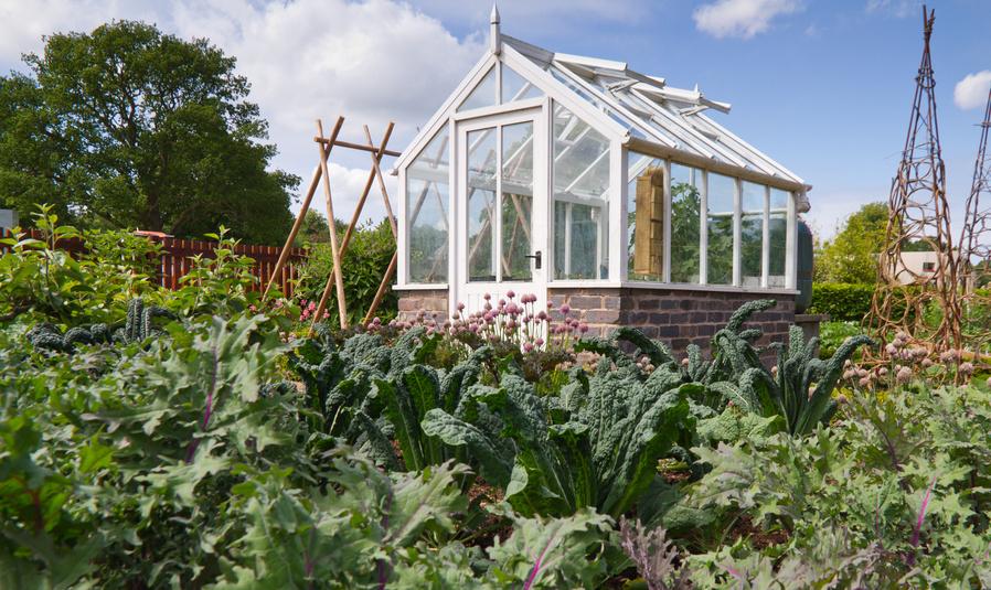 Gartenhaus im Kleingarten