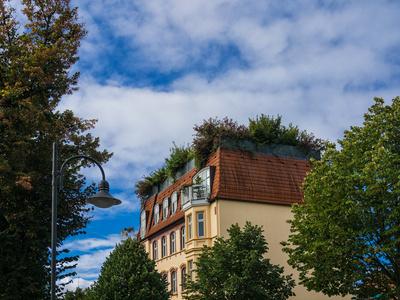 Haus mit Dachgarten im Gruenen