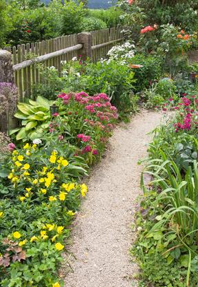 Blumen am Rand eines Gartenweges