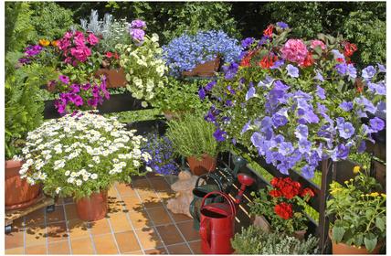 Kleiner Balkon mit Sommerblumen