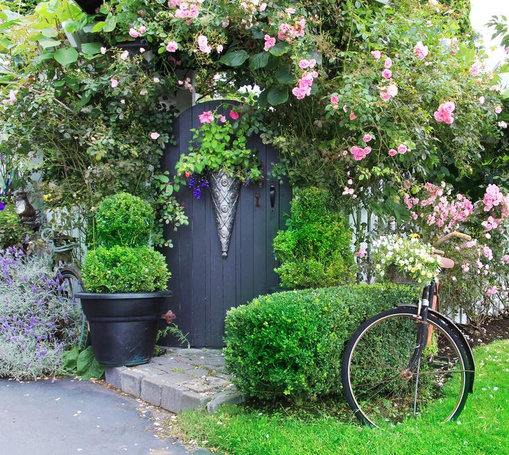Bepflanzter Vorgarten