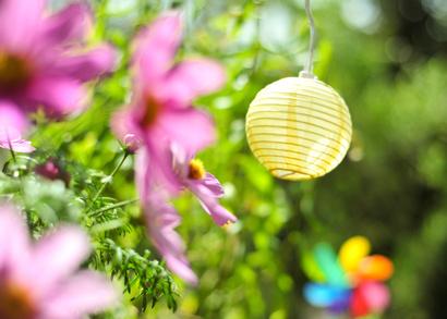 Deko mit Blumen und Lampion