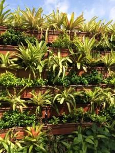 Übereinander angebrachte Balkonkästen an einer Wand