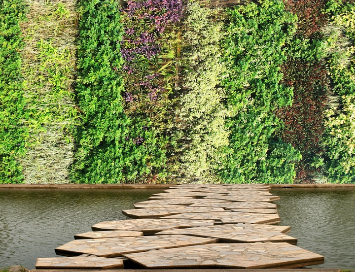 Mit verschiedenen Pflanzen bedeckte Hauswand
