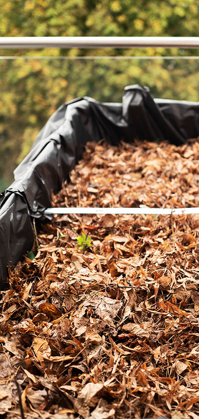 Die dritte Schicht: Laub und Kompost