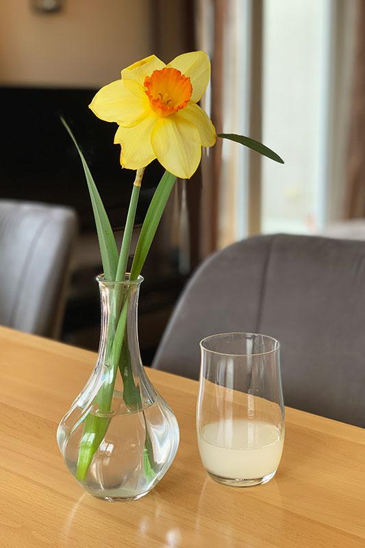 Limonade für Blumen