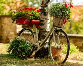 Do-It-Yourself-Garten