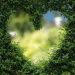 Kleinen romantischen Garten gestalten