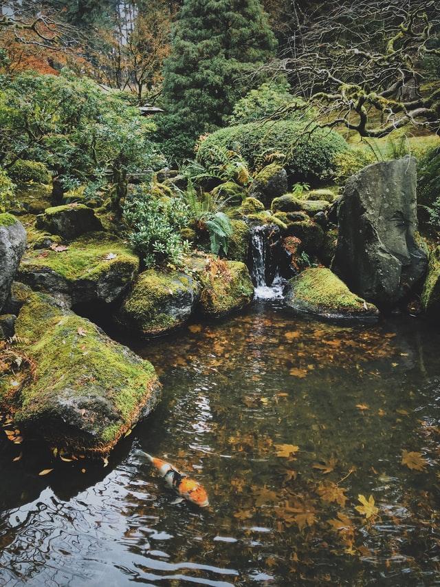 Mit Wasser einen kleinen romantischen Garten gestalten