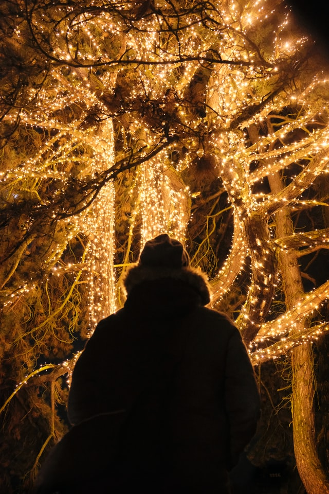 Romantisches Licht im Winter